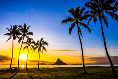 Hawaiian Sunrise Stock Photography