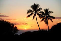 Hawaiian Sunset. Sun setting into the cloudy horizon silhouetted by palm trees Royalty Free Stock Photos