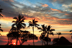 Sunset over Hawaii beach Royalty Free Stock Photo