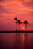 Hawaiian Sunset on Big Island Royalty Free Stock Photo