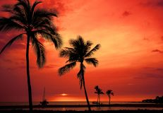 Hawaiian sunset on Big Island Stock Images
