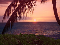 Hawaiian sunset. On the island of Oahu Royalty Free Stock Photography