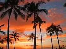 Hawaiian Sunset On Vacation. Kooloina resort on oahu hawaii 2010 Royalty Free Stock Images