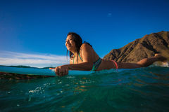 Hawaiian surfer girl in water on her surfing board Royalty Free Stock Photography