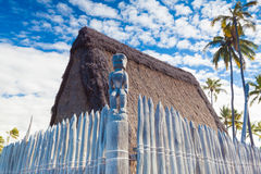 Hawaiian thatched roof dwellings Royalty Free Stock Photography