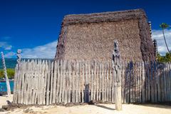 Hawaiian thatched roof dwellings Royalty Free Stock Photo