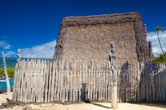 Hawaiian thatched roof dwellings Stock Image
