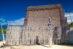 Hawaiian thatched roof dwellings Royalty Free Stock Photos
