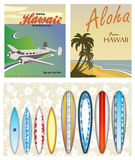 Hawaiian Themes. On retro vintage style Royalty Free Stock Images