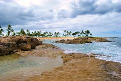 Hawaiian Tidal Pool Stock Photo