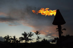 Hawaiian torch. Hawaii torch at night, with lots of room for you words and type Royalty Free Stock Photos