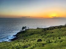 Hawaiian tropical coastline - the Road to Hana Stock Photography