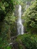 Hawaiian tropical waterfall stock photo