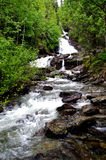 Hawaiian Waterfall Stock Photography