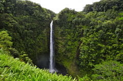 Hawaiian Waterfall Stock Photography