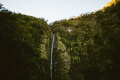 Hawaiian Waterfall Stock Images