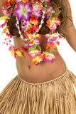 Hawaiian woman in coconut bra and grass skirt body Stock Photos