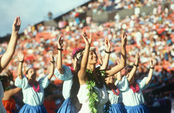 Hawaiian women dancers Royalty Free Stock Image