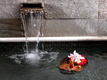 Hawaiian zen. Floating floral coconut admist a waterfall Stock Photos