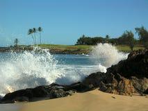 Hawaiianer-Wellen Lizenzfreies Stockbild