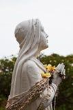 Hawaiin Mary с леями раковины стоковые изображения