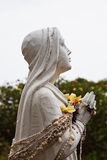 Hawaiin Mary with shell Lei stock images