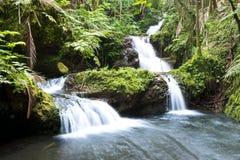 Hawaiin-Wasserfall Stockfotos