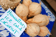 Hawaiische eiskalte Kokosnuss Lizenzfreie Stockfotos