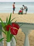 Hawaiische Ferien Lizenzfreies Stockfoto