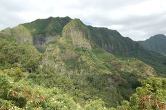 Hawaiische Gebirgsspitze Stockfoto