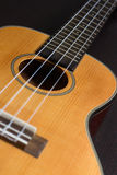 Hawaiische Gitarre der Ukulele Stockfotografie