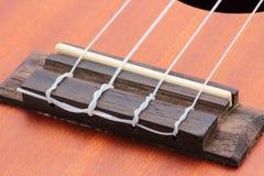 Hawaiische Gitarre der Ukulele Lizenzfreies Stockbild