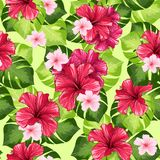 Hawaiische Hibiscus-Duft-Blume und Monstera-Blatt-Vektor-nahtloses Muster stock abbildung