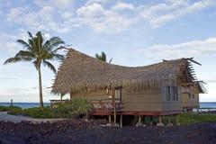 Hawaiische Hütte Stockbild