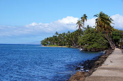 Hawaiische Küste, USA Lizenzfreie Stockfotos