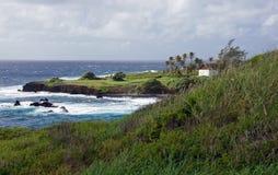 Hawaiische Küste, USA Lizenzfreie Stockbilder