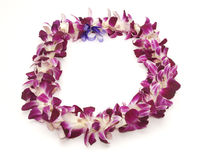 Hawaiische Leu Stockfotos