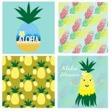 Hawaiische Sammlung mit nahtlosen Mustern und Karten Stockbild