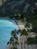 Hawaiische Strand-Szene Stockfoto