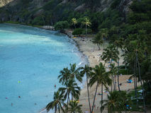 Hawaiische Strand-Szene Stockfotografie