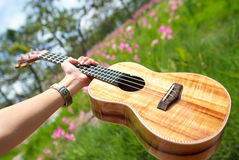 Hawaiische traditionelle Instrumentukulele mit der Hand Stockfotos