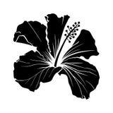 Hawaiischer Hibiscus-Laser schnitt Schattenbild-Vektor lizenzfreie abbildung