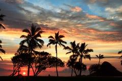 Hawaiischer Sonnenaufgang 8 lizenzfreies stockfoto