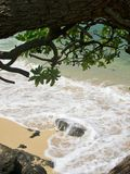 Hawaiischer Strand Lizenzfreies Stockfoto