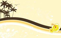 Hawaiischer tropischer Strandrahmen background4 Stockfotografie