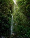 Hawaiischer Wasserfall Lizenzfreie Stockfotos