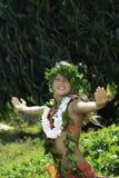 Hawaiisches hula stockfoto