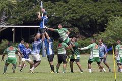 Hawaiisches Rugby Stockfotos