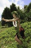 hawajczyka hula Obrazy Royalty Free