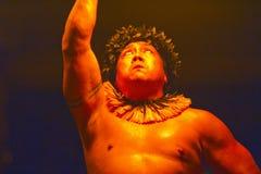 Hawajczyka Luau ogienia i tana przedstawienie obrazy royalty free